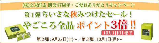 ご愛食ありがとうキャンペーン 第1弾 ちいさな秋みつけたセール! やごころ全品ポイント3倍!!