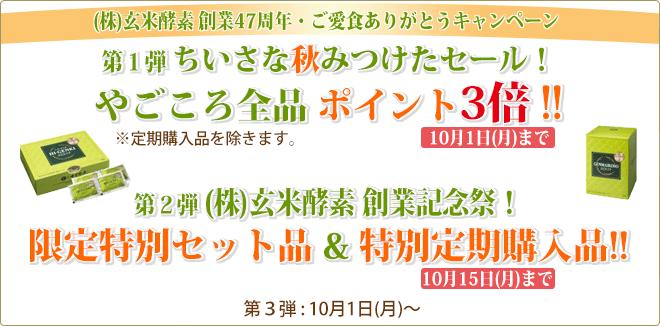 ご愛食ありがとうキャンペーン 第1弾 やごころ全品ポイント3倍!!/第2弾 セット品・定期購入品 特別価格!