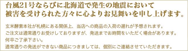台風21号ならびに北海道の地震において被害を受けられた方々に心よりお見舞い申し上げます。商品の入荷が遅れることが予想され、発送までお時間をいただく場合がございます。
